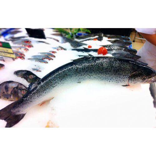 Cá hồi Nauy SALMAR size 6-7kg (19-21kg/Thùng)