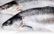 Chuyên phân phối cá hồi Na UY chính gốc của các thương hiệu nổi tiếng trên toàn quốc